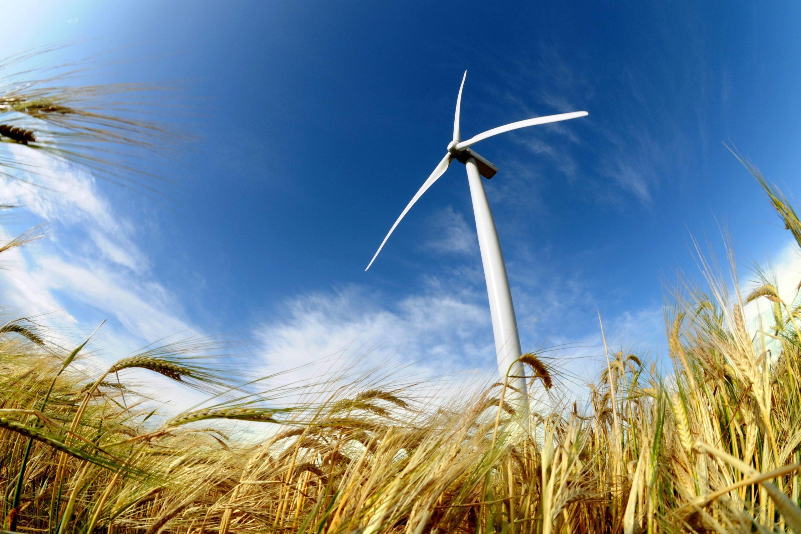 Förnybar elproduktion i lokalnäten