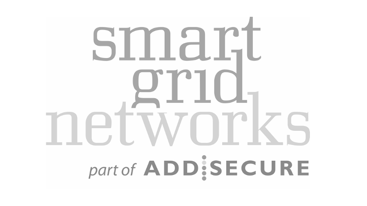 Smart Grid Network logo