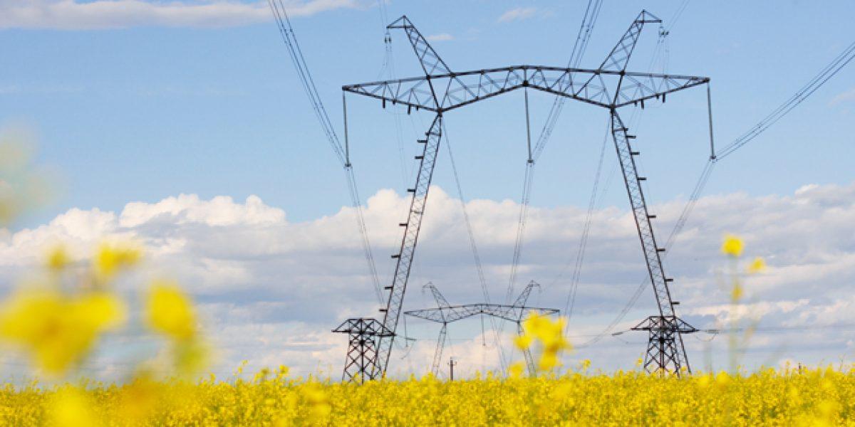 Power grid along fields